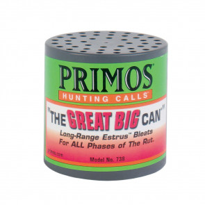 THE GREAT BIG CAN